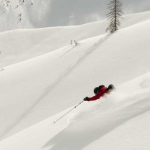 Ski Length