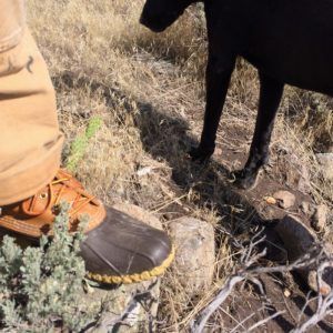 6 inch ll bean boot review